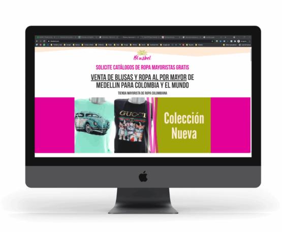 Marketing digital para pyme Blusbel